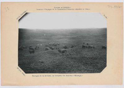 12952. Bessans. vallée d'Averole. La Motuaz. agriculture. alpage Alexis Pautaz . 1930. RTM