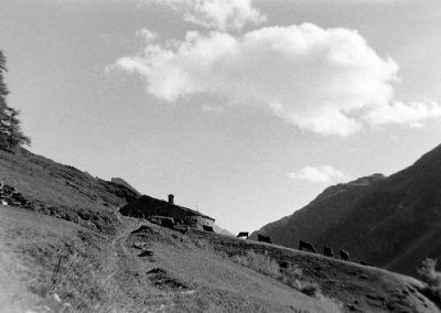Haut des Vincendières photo Peter Guggenbühl 1967