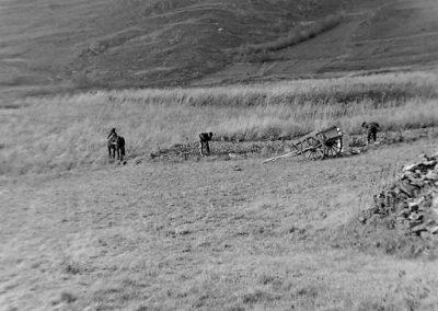 Travail des pommes de terre photo Peter Guggenbühl 1967